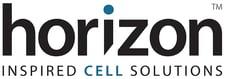 Horizon-Logo-LR