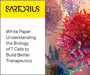 Immunology-TCell-WhitePaper-BioA-2020-300x250 no cta